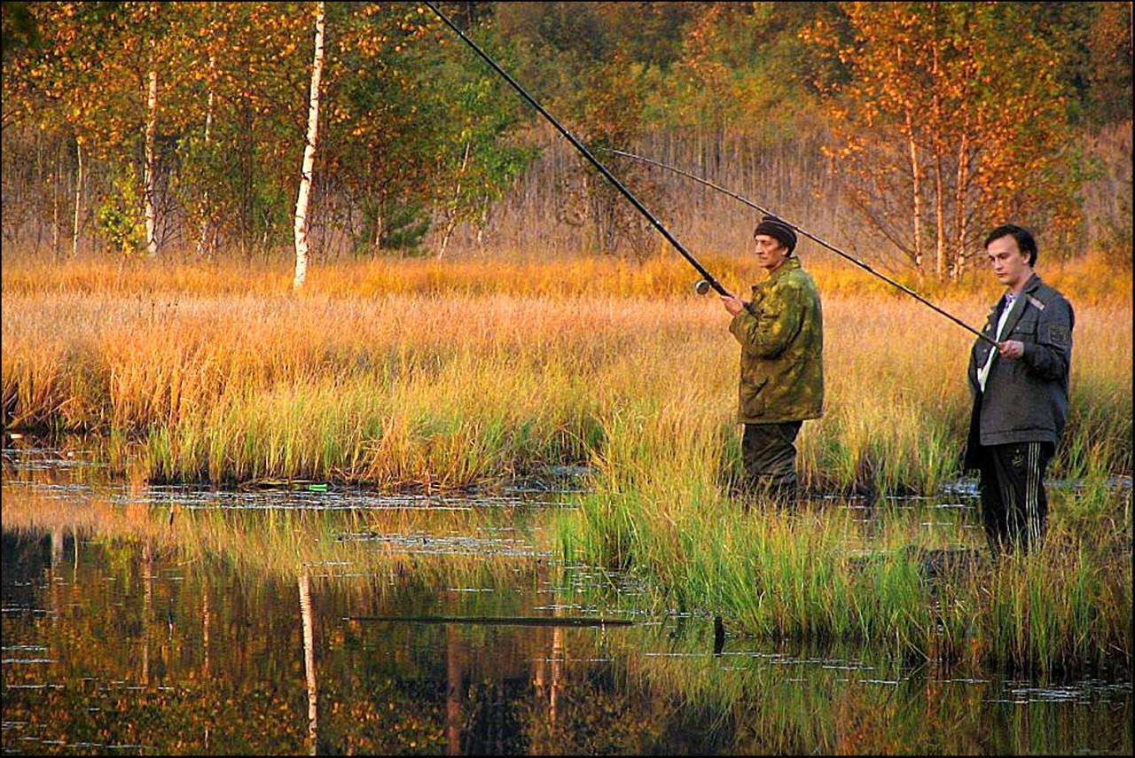 на что ловить рыбу осенью на реках